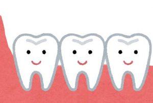 歯茎と歯のイラスト